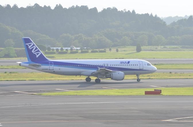 ANA航空 推出特惠日本內陸航線優惠旅客
