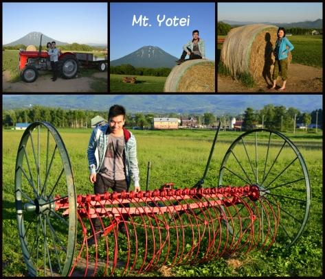 遊客可撮影甚至坐上車輛拍攝,彷如置身大草原牧場內。