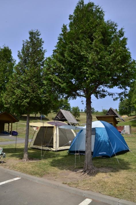 Free Camp Site 最近入口的營地