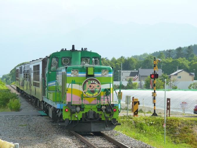 夏天去花田必坐特色觀光列車