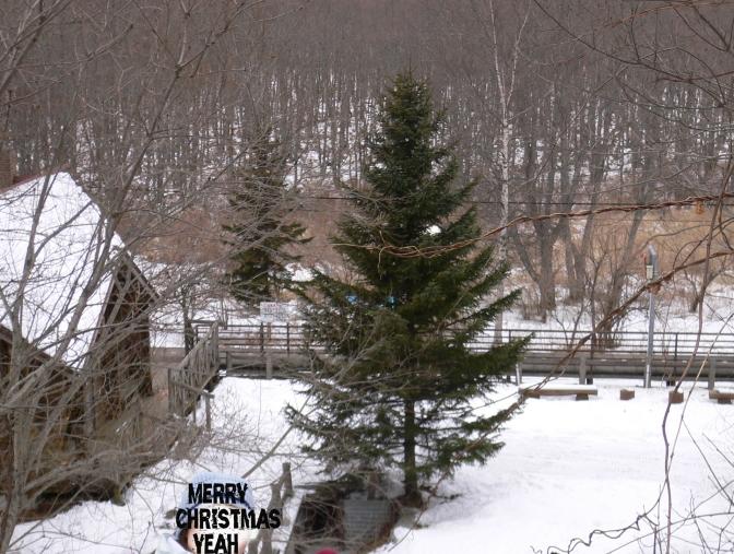 北海道各地聖誕特設