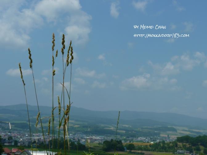上富良野八景 ~ 和田草原とどんぐりの郷