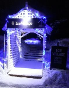 去年 Ice Village 入口