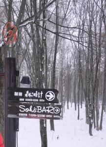 看見這個指示牌,進入森林小村吧!